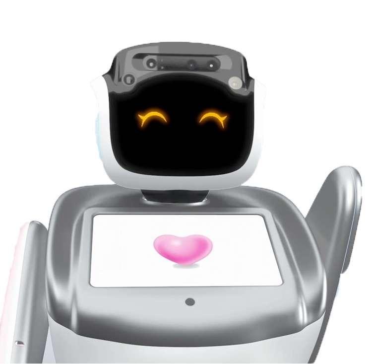 开放式API定制服务智能社交机器人