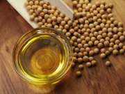 refined soy beans oil