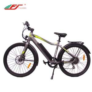 New model lady electric bicycle