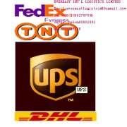 DHL/UPS/FedEx/TNT/EMS Courier service